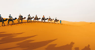 Marrakesh | Compare Tickets, Tours, and Activities Prices