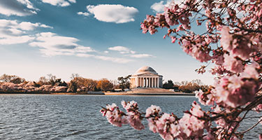 Washington, D.C. | Compare Tickets, Tours, and Activities Prices