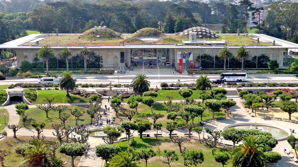 Get Scientific at the California Academy of Sciences