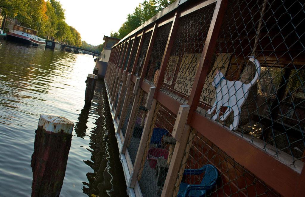 Animal Sanctuary on the Poezenboot