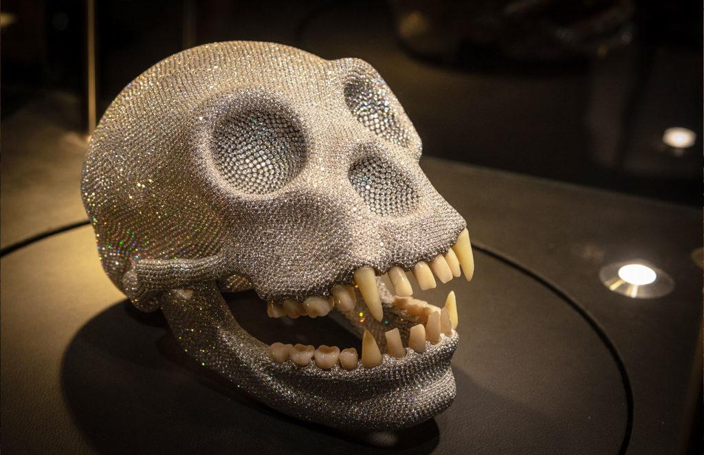 Ape at Diamant Museum