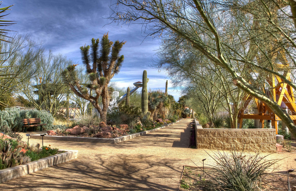 Visit the Springs Preserve Botanical Garden.